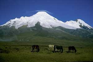 Reserva ecológica Antisana, paraíso biológico de Ecuador