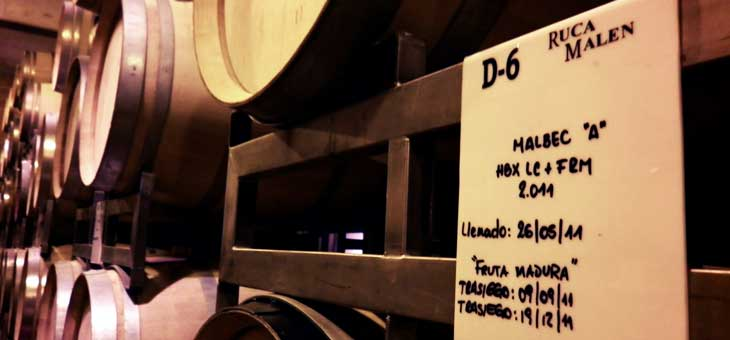 Bodegas Ruca Malen/Foto Juan Coma