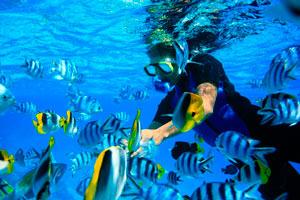 El buceador en Bora Bora