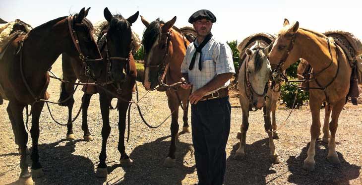 En Mendoza son muy habituales las cabalgatas a caballo/Foto Juan Coma