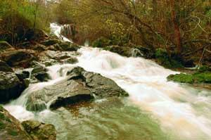 Cascada del Huesna Foto: © Juan Pedro Donaire