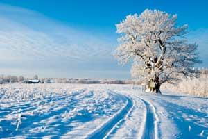 Vacaciones de invierno en Estonia