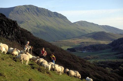 Verano de aventura en Gales