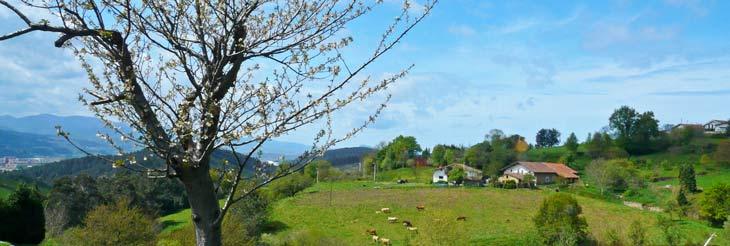 El paisaje de la comarca de Uribe está salpicado por infinidad de caseríos/Foto Comarca de Uribe