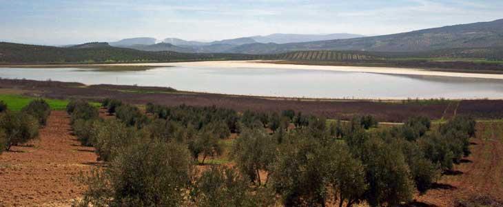 Laguna del Salobral/Foto Mancomunidad de la Subbética
