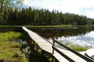 Laponia sueca en primavera