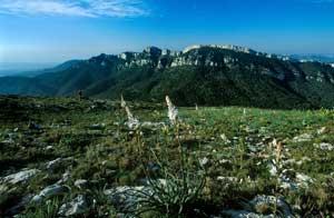 Senderismo en las Montañas de la Costa Dorada (Tarragona)