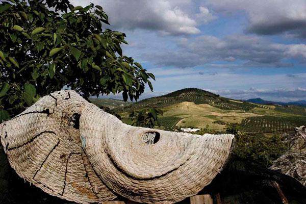 La Ruta del Vino Montilla-Moriles presenta las III Jornadas profesionales del turismo del vino