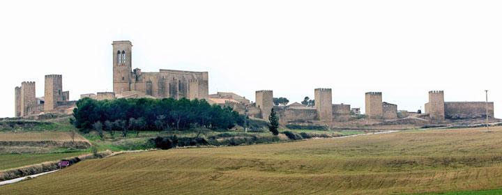 Cerco medieval de Artajona. Autor: Antonio Olza