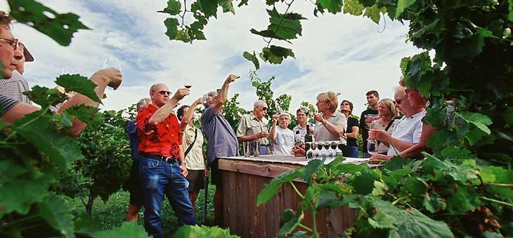 Los vinos de la zona de Niágara son muy apreciados