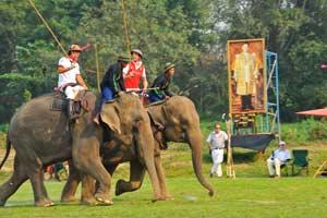 Polo en elefantes
