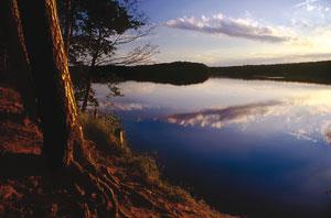 Viaje a Polonia: turismo activo en la región candidata a las 7 Maravillas de la Naturaleza