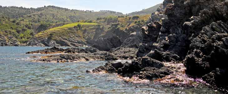 La Costa Vermille esconde calas con aguas cristalinas/Foto Agnese Spagna