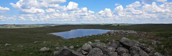La región natural del Aubrac está situada en una meseta