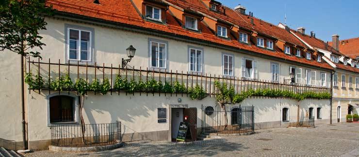 Casa donde se encuentra la Stara trta, la vid más antigua del mundo