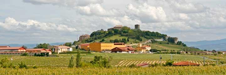 Rioja alavesa ruta turismo y vinos for Oficina turismo laguardia