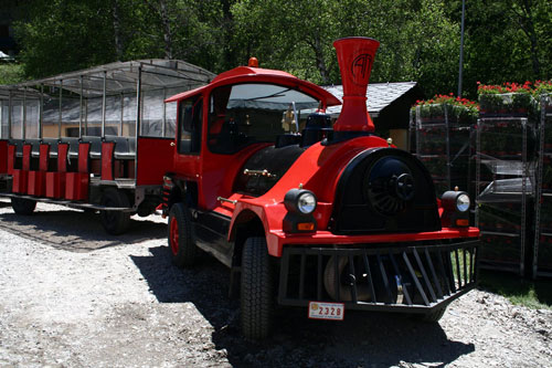 Tren turístico Vallnord