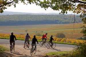 El Valle del Loira es un lugar ideal para ir en bicicleta Foto: ©  P Forget.