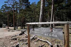 Comarca de Pinares, bosques y lagunas entre Burgos y Soria