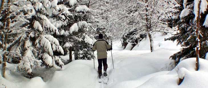 En Gastein son muy populares las excursiones con raquetas de nieve