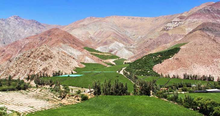 Vista del Valle del Elqui © Andrea Sagués