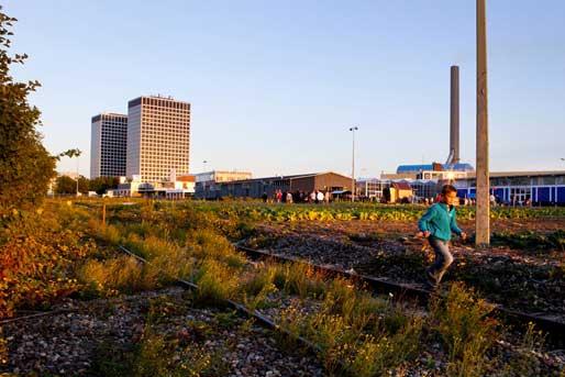 Los edificios de la zona portuaria de Rotterdam se han reconvertido en locales, oficinas y restaurantes © Frank Hanswijk