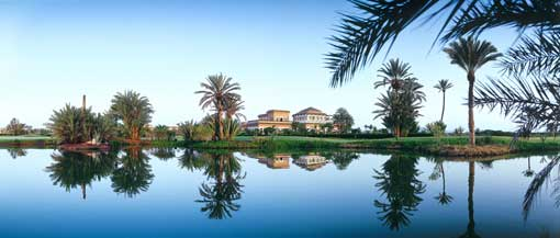 https://www.tusdestinos.net/wp-content/uploads/2013/02/palmeraie_golf_club.jpg