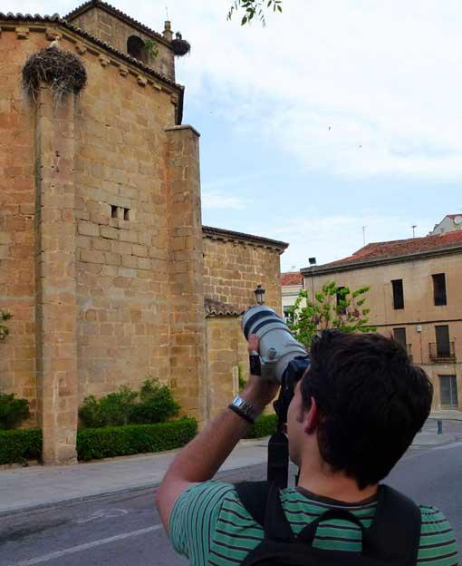 Rutas ornitológicas por Cáceres