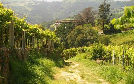 Gárate-Santa Bárbara © Susana Gil
